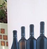 יקב דלתון משיק יינות כרם יחיד Single Vineyard