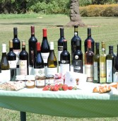"""פסטיבל היין האזורי השני """"ארץ כרמים וטעמים"""""""