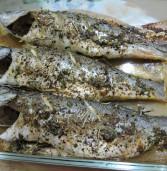 דג בס בתנור בעשבי תיבול