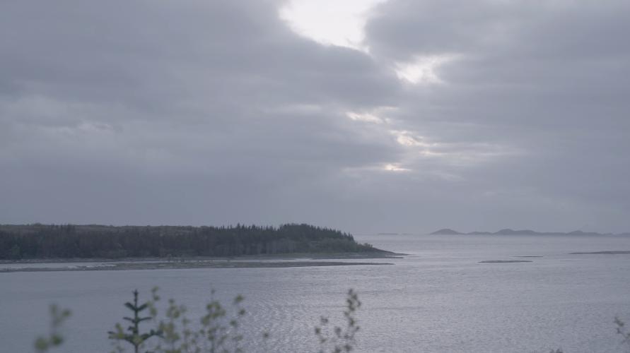 Nordskot Landscape 2
