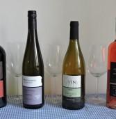 יינות בנימינה לשבועות