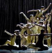 מופע מחול של גוטייה דאנס תיאטרון המחול שטוטגרט   Gauthier Dance Theaterhaus Stuttgart