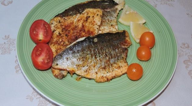 דג דניס בניחוח שווארמה