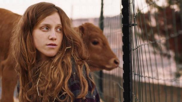 פרה אדומה – סרט מסוכן