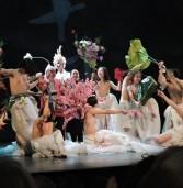 """אביב מחול סיני 2019""""פריחת הזמן"""" – להקת המחול המודרני של ביג'ינג"""