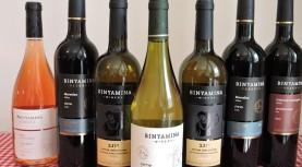 יינות יקבי בנימינה לחג