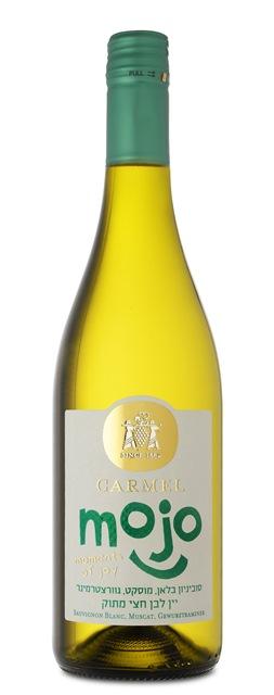 יקבי כרמל משיקים סדרת יינות חדשה MOJO צילום אייל קרן