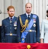 הארמון הבריטי והעיתונות | The Palace & the Press